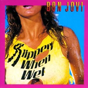 Bon Jovi album cover 2
