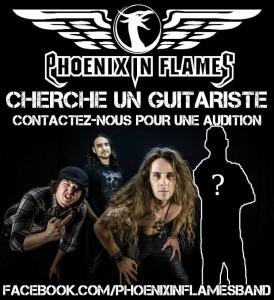 Phoenix In Flames photo