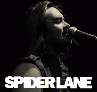 Spider Lane photo 7