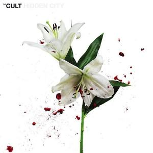 The-Cult-Hidden-City
