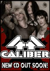 44 Caliber Complete Second Album, Looking For Guitarist