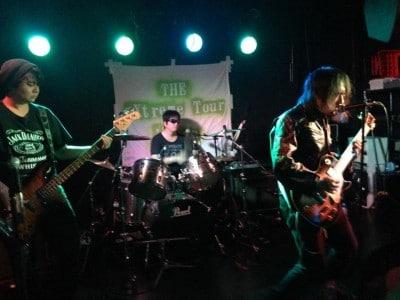 Imari Tones photo 2