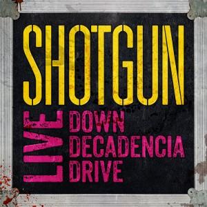 Shotgun photo 5