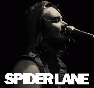 Spider Lane photo 7