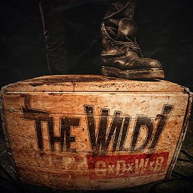 The Wild! CD cover