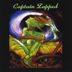 Captain Zapped - Captain Zapped